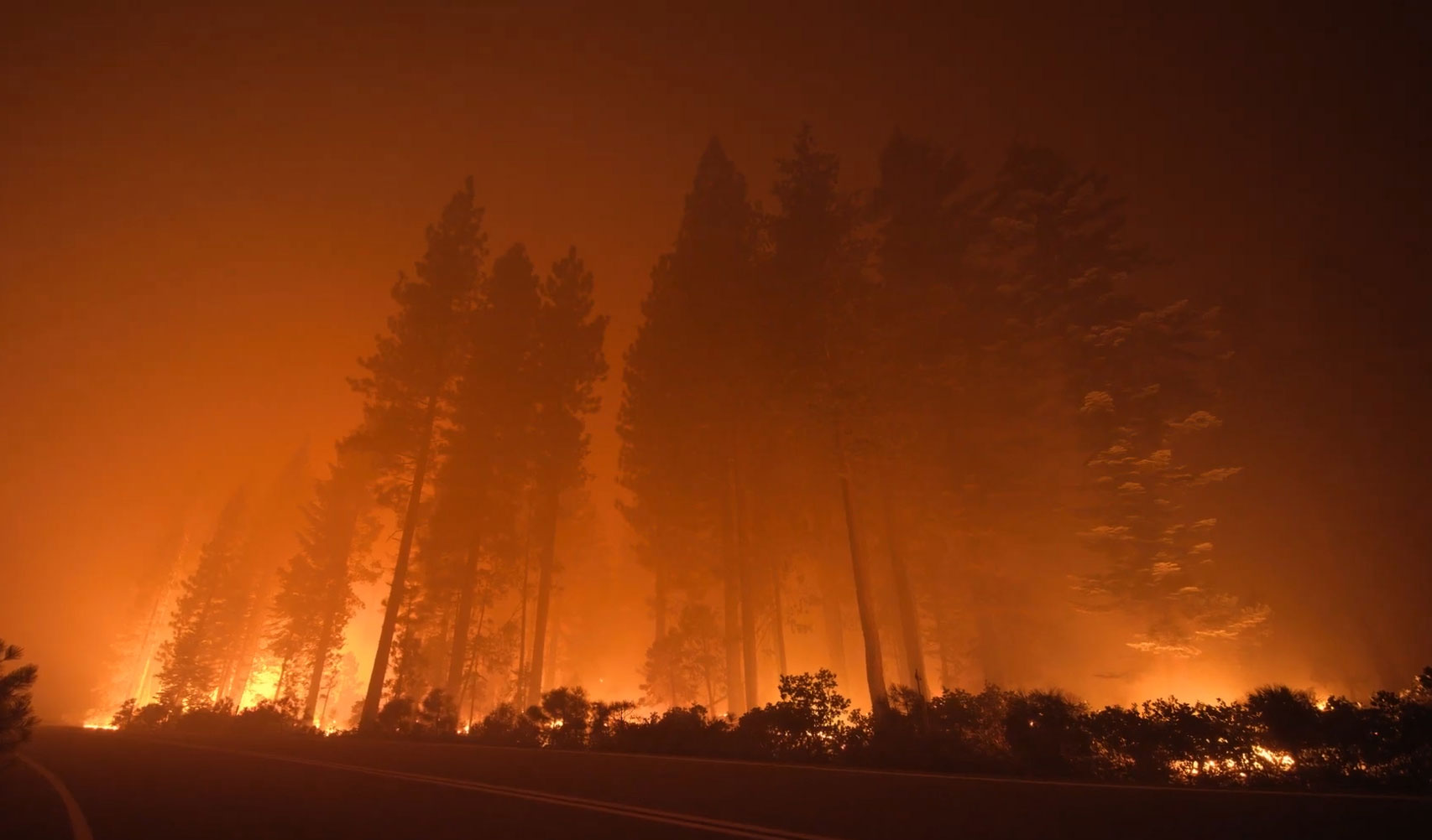 Subaru Uses Dramatic Footage of the California Wildfires to Announce Re-Foresting Project | Muse by Clio