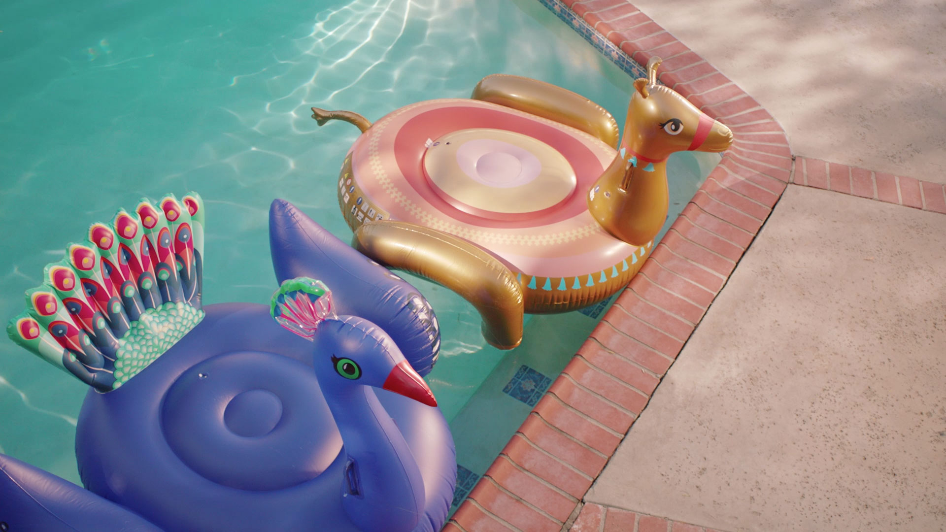 Orkin Presents Unexpected Testimonials in Wry New Ads   Muse by Clio